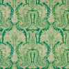 grasse vert