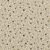 K5131-09-terrazzo-canvas_01