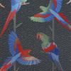 Cubana-papier-pein-perroquets-Arini-W680601