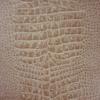 papier-peint-crocodile-crocodilus-vinul-osborne-and-little-W6337-04
