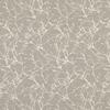7758-05-acacia-chamois_ombre-vegetales-arbre