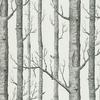 papier-peint-woods-arbre-cole-and-son-12147 - Copie