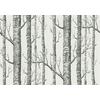 papier-peint-woods-arbre-cole-and-son-12147