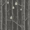 papier-peint-cole-son-arbre-foret-woods-pears-crepuscule