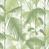papier-peint-cole-and-so-palm-jungle-feuille-exotique-95-1001
