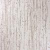 birch-papier-peint-bouleau-osborne-ivoire