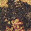 TP_289_04-cerisier-sauvage-panoramique-elitis-noir-or