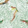 COS141-papier-panoramique-oisaux-tropical-vert-blanc