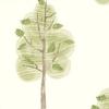 W566-01-papier-peint-enfant-nature-arbre