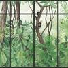 panoramique-jungle-singe-vert-cadre