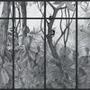panoramique-jungle-singe-noir-cadre
