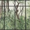 panoramique-jungle-singe-cadre