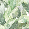 papier-peint-fuilles-jungle-banano-blanc