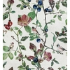 papier-peint-nature-oiseaux-fleurs-oldfinch-Song-Cotton-9500030