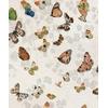 papier-peint-papillons-Magic-butterflies-Linen-9500051