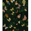 papier-peint-papillons-Magic-butterflies-Night-9500050