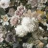 papier-peint-design-grosses-fleurs-mansfield-park-01
