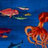 GRD112-papier-peint-pieuvre-nobilis-ito
