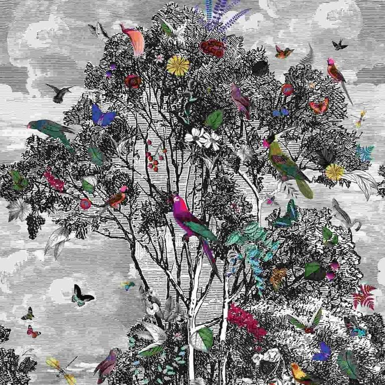 i_papier-peint-animal-glade-osborne-little-Multicolore-front-2028