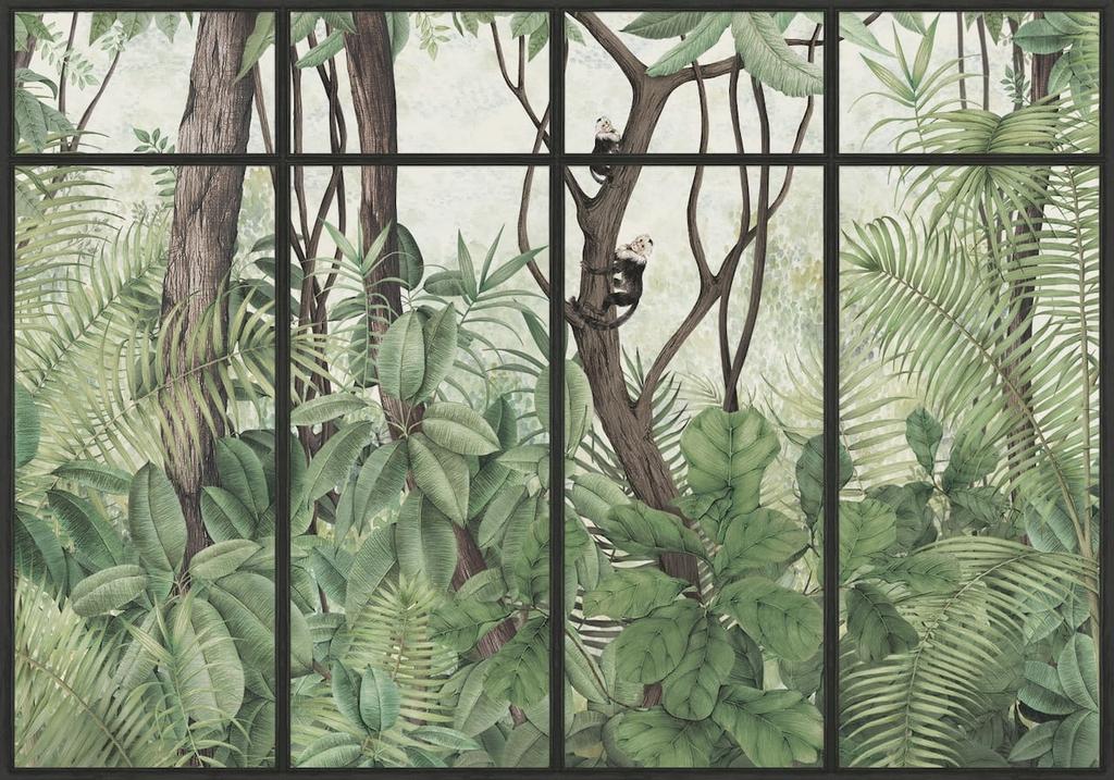panoramque-casa-de-vidro-jungle-singe-sunset-cadre