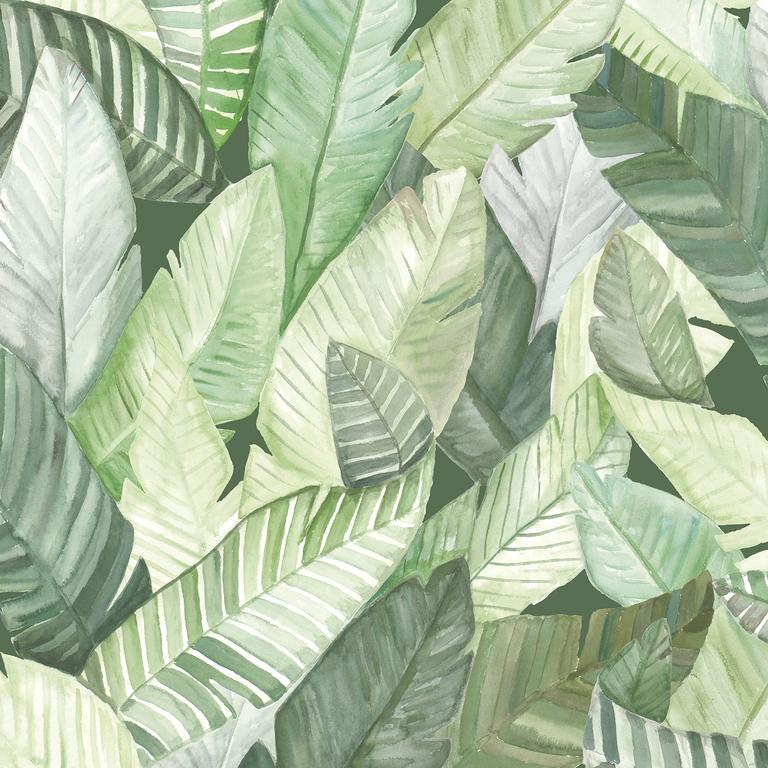 papier-peint-fuilles-jungle-banano-vert
