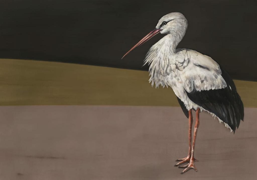 papier-panoramque-oiseau-heron-Stork-Mother-Black-9500300