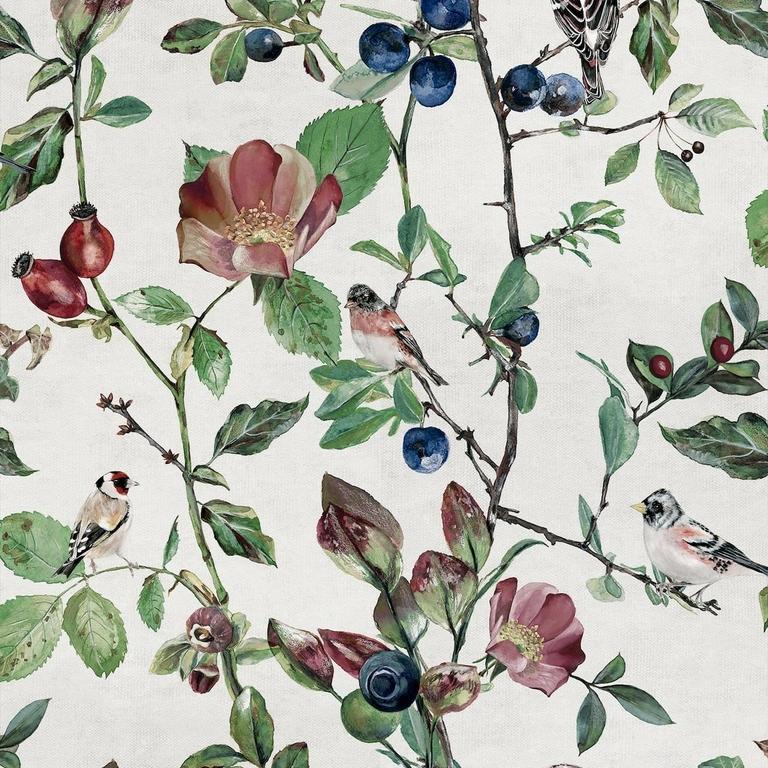 papier-peint-nature-oiseaux-fleurs-oldfinch-Song-Cotton-visuel