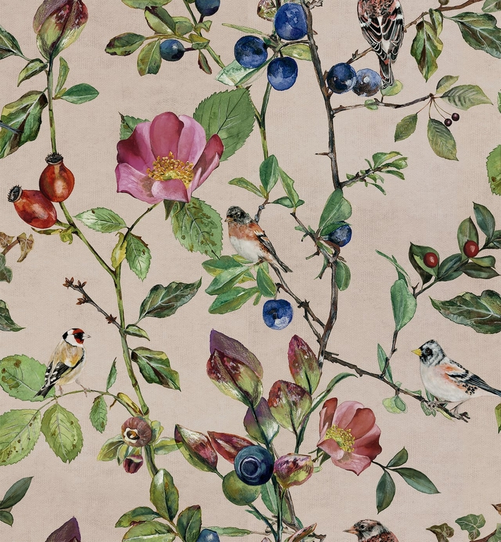 papier-peint-nature-oiseaux-fleurs-Goldfinch-Song-Blush-9500032