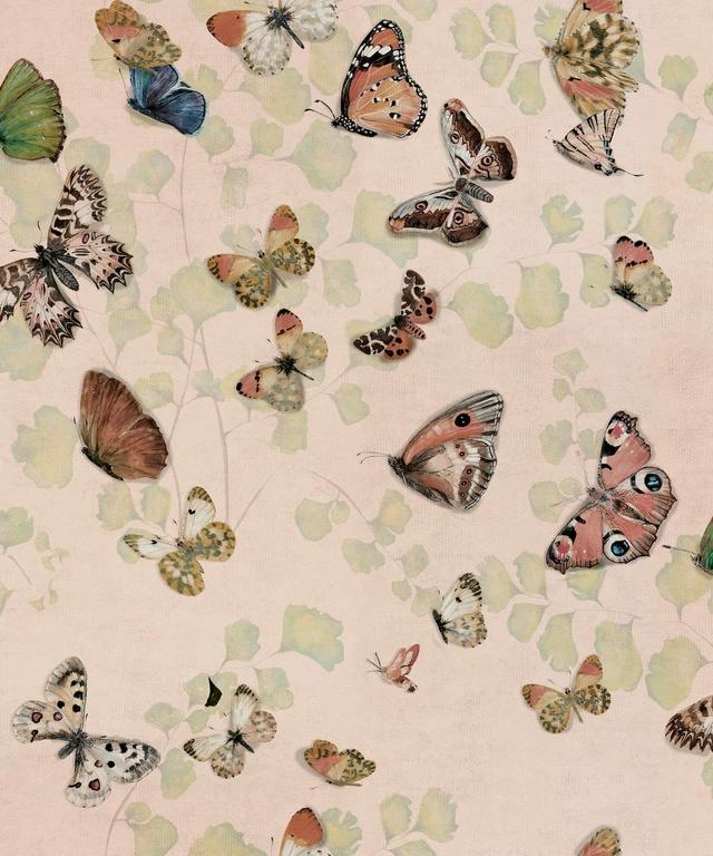 papier-peint-papillons-Magic-butterflies-Sweet-9500052