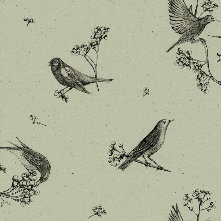 papier-peint-retro-oiseaux-Sweet-Birds-Matcha-9500073