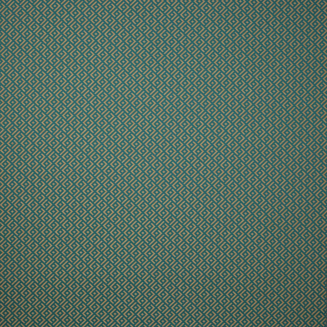 04987-11_canard-tissu-vogue-manuel-canovas