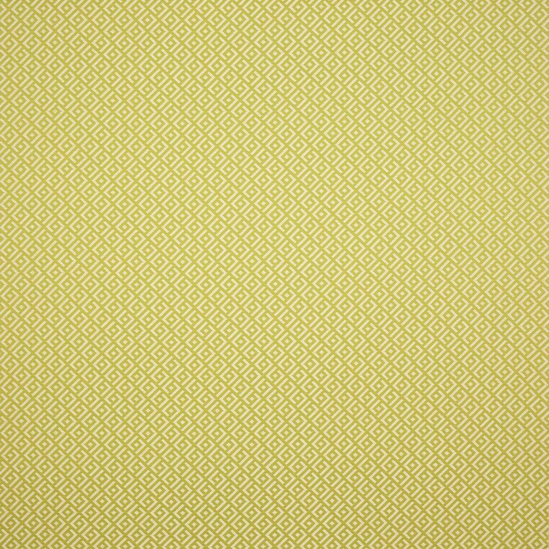 04987-07_absinthe-tissu-vogue-manuel-canovas