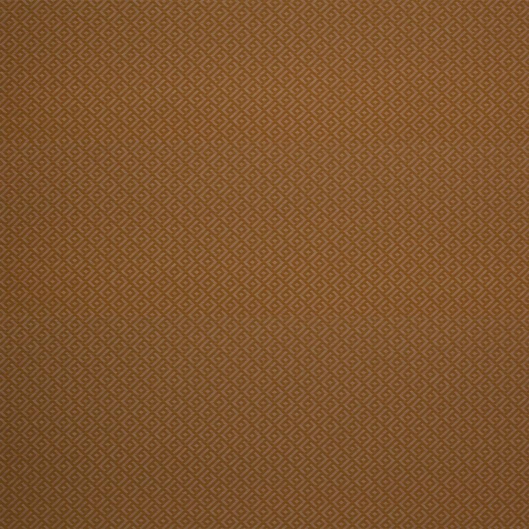 04987-06_camel-tissu-vogue-manuel-canovas