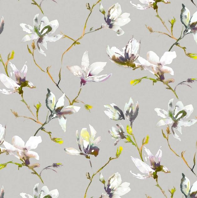 7711-01-saphira-orchid_12