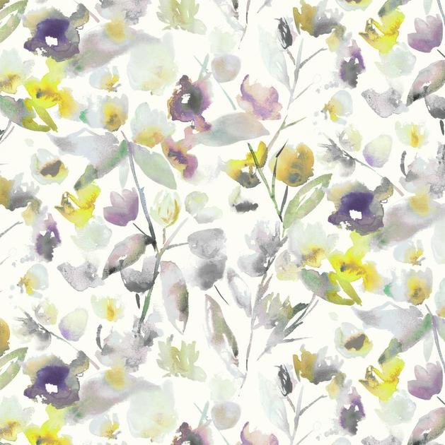 7712-01-mariola-orchid_02