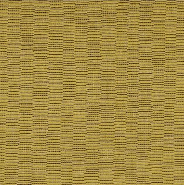 Casamance iberis jaune