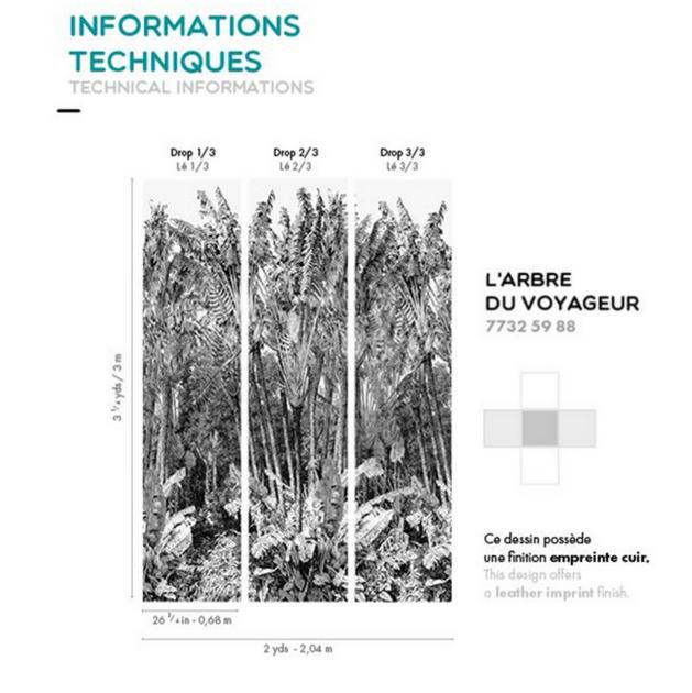 Informations techniques - Larbre du voyageur