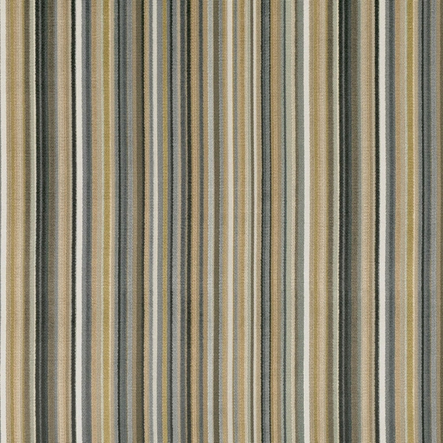 7761-01-parada-cumin_epingle-raye