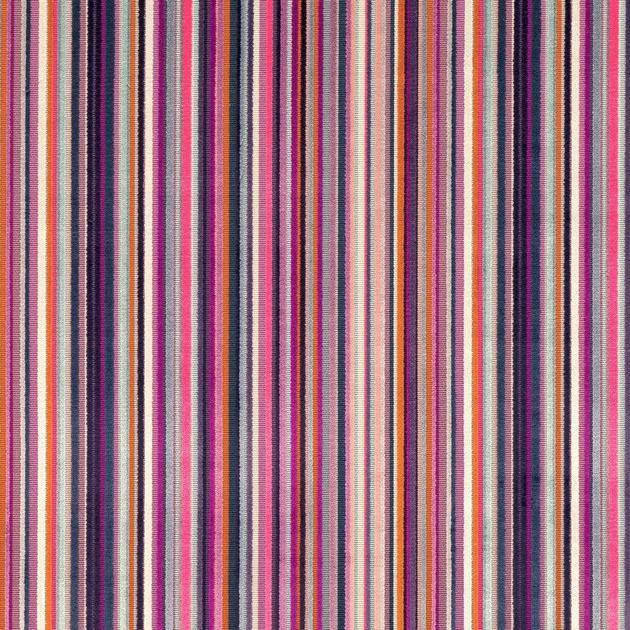 7761-05-parada-crocus_rayure-fantaisie-colore