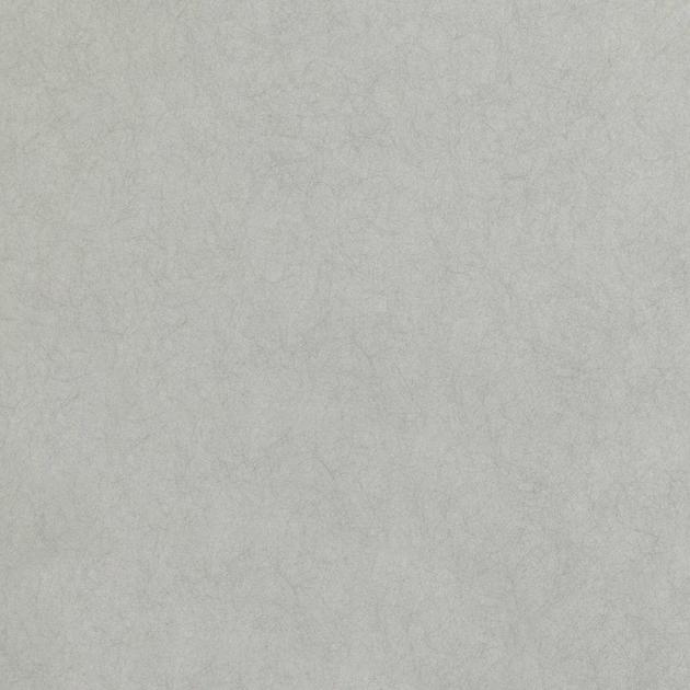 W399-06-asper-wallcovering-silver_papier-peint-intisse