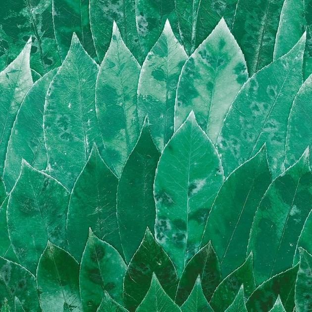 casamance-manainala-vert