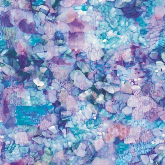 casamance-paracanthurus-multicolore