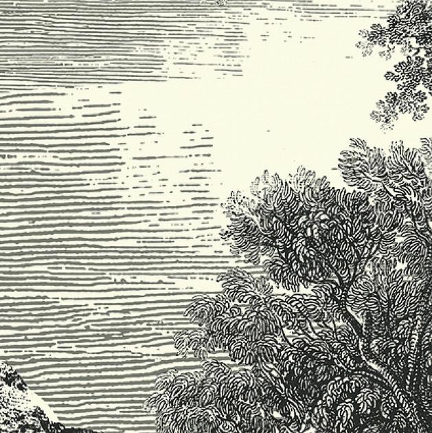 papier-peint-panoramique-paysage-noir-blanc-zoom
