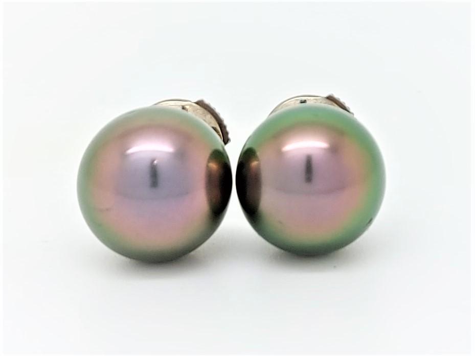 Boutons d\'oreilles 2 perles de Tahiti de 10 mm couleur queue-de-paon
