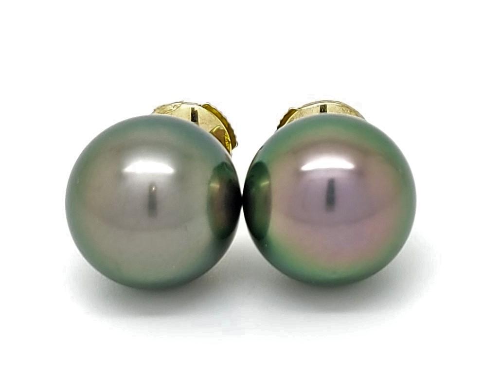 Boutons d\'oreilles 2 perles de Tahiti de 11 mm couleur queue-de-paon vert tropical