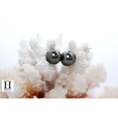 Boucles doreilles boutons et perles de tahiti  (2)