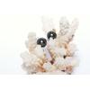 Boucles doreilles Boutons perles de tahiti bleu vert (4)