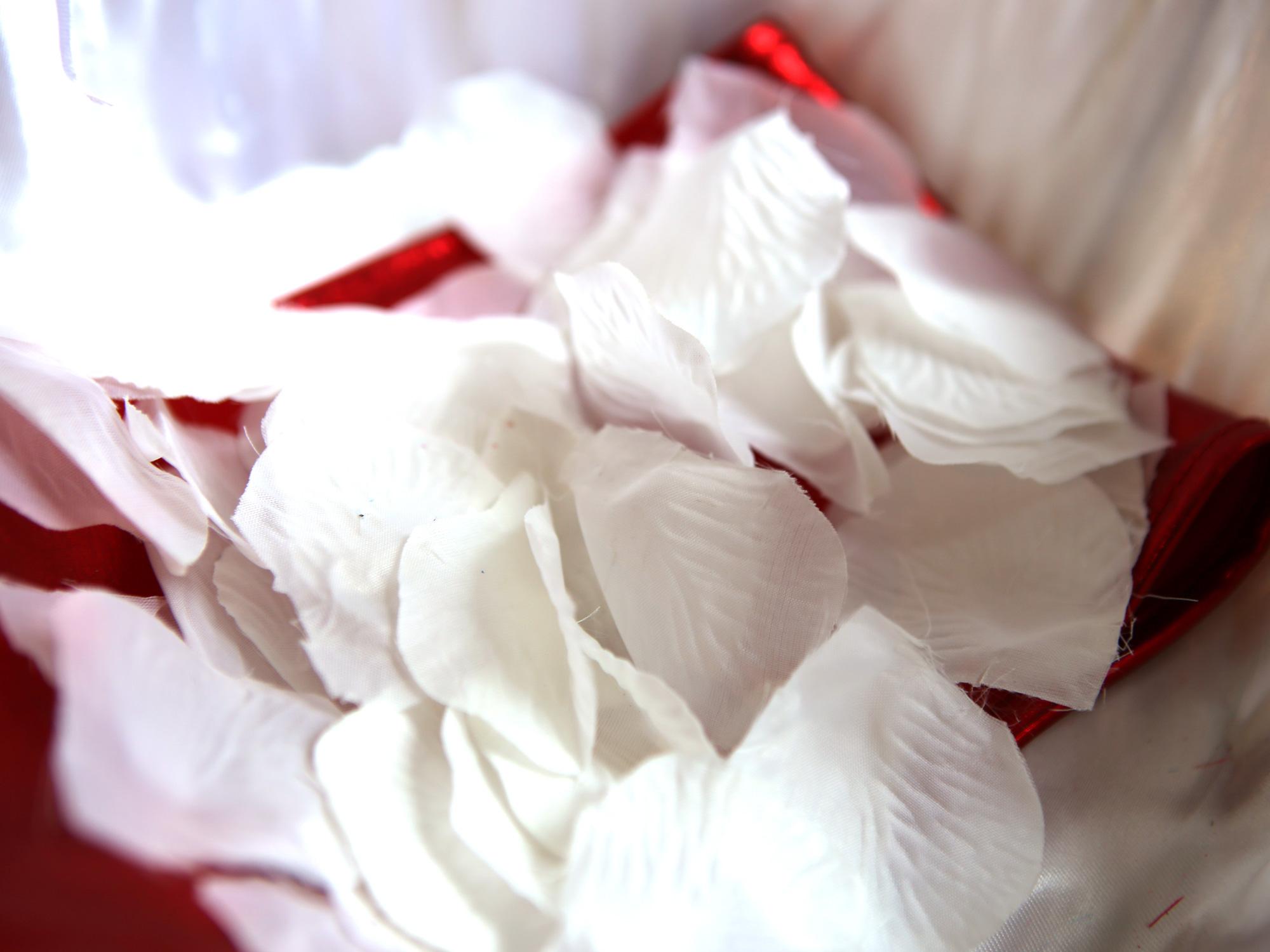 5 paquets pétales de rose x 300 déco mariage MPR1
