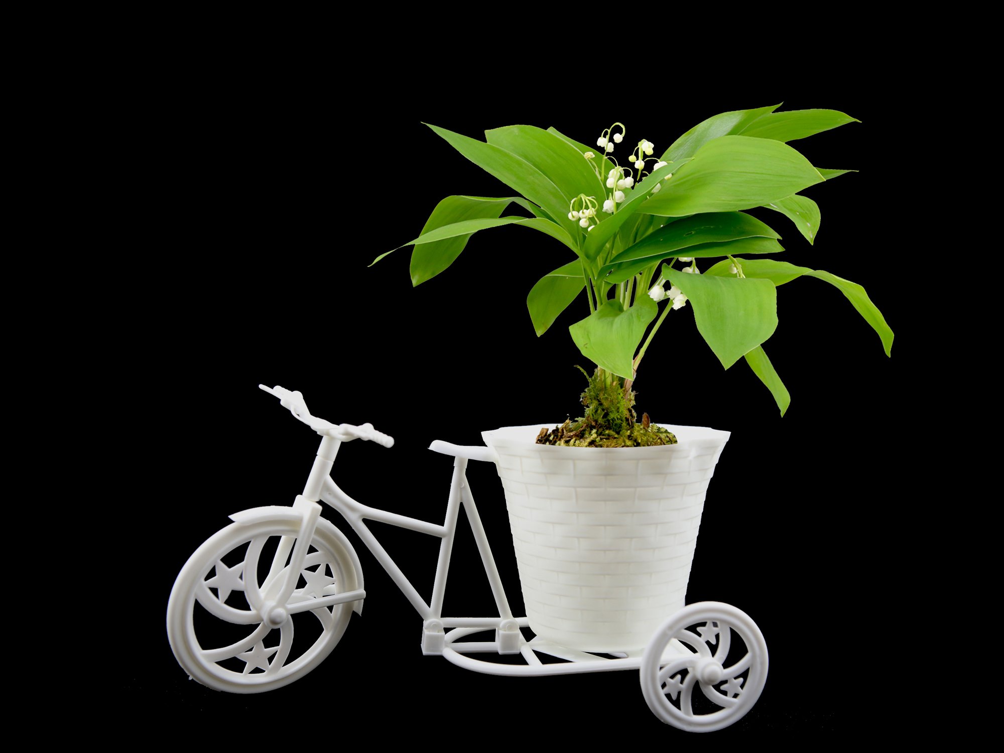 Lot de 10 pots vélo à fleurs PVC pour brins de muguets DMP12
