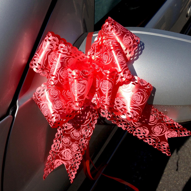 Lot 10 nœuds papillon automatiques pour décoration voiture mariage DNM1 Rouge